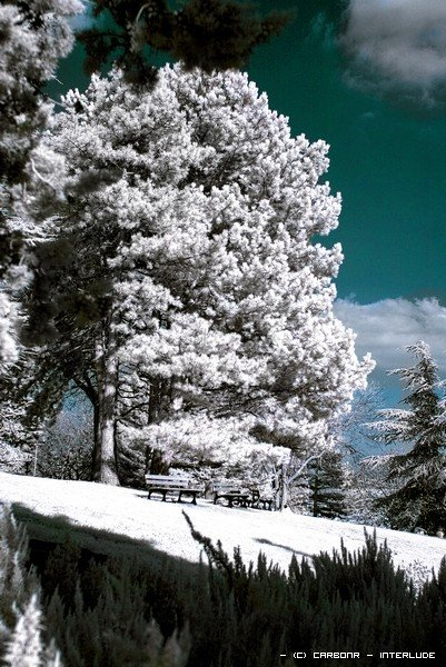 hivermontjuzet.jpg