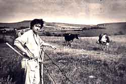 - 68 - Jean-Louis MURAT ... et le travail ... jean-louis_murat-et-ses-vaches1