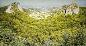 fonsalade