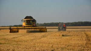 agriculture 2